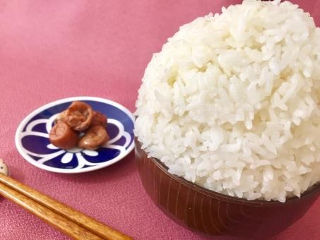 【ダイエット中の米】炭水化物は冷やせば太らない?糖質吸収を抑えられる?