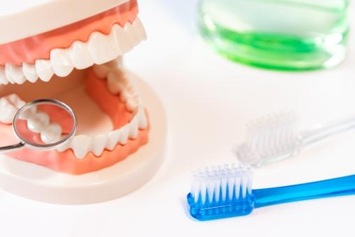 【夜食対策!歯磨きで痩せる?】歯磨きダイエットって?歯を磨くだけで食欲を抑えるって本当?
