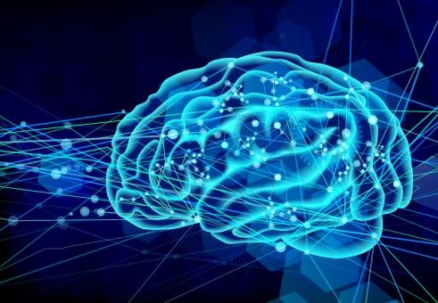 【最強の脳トレ】ランニングは痩せるだけじゃない?脳も鍛えられるその根拠とは?